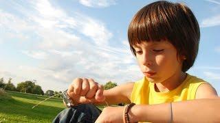 Quels sont les symptômes de l'autisme ?