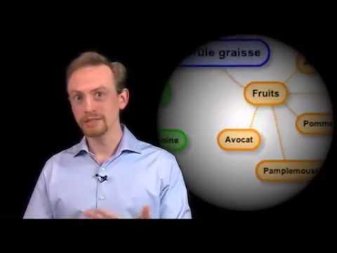Les Aliments Brûle Graisse Expliqués