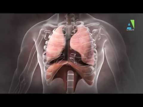 La Minute Antidote : BPCO