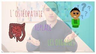 L'ostéopathie replace les organes !