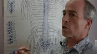 Vidéo n°27 : Que soigne la chiropratique ?