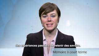 La Mémoire à court terme ou La Mémoire du travail