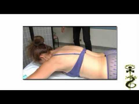 Repérage Des Points D'acupuncture Sur La Colonne Vertébrale