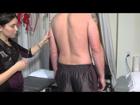 Physiothérapie : Maux De Dos / Entorse Lombaire / Lombalgie