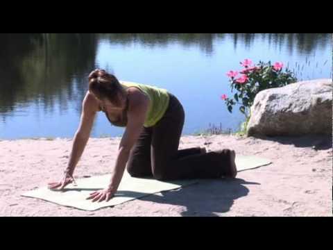 Exercice Thérapeutique - Nerf Sciatique