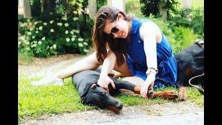 L'ostéopathie Canine avec Cécilia Voiry