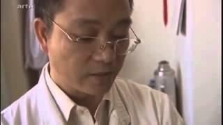 Séance d'acupuncture en Chine + Explications - Dr Wang - Extrait d'un documentaire cité plus bas.