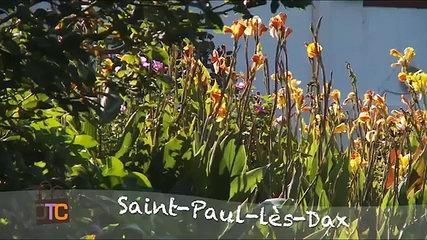 Saint-Paul-lès-Dax : Station Thermale Activités Et Détente